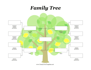 family tree template, ancestry tree, pedigree chart, family tree design, family tree maker,  free family tree, my family tree, how to make a family tree,  free family tree template, family tree design, family tree chart, family tree diagram,  family tree forms, family tree format, family tree Sample, family tree drawing, family tree picture, family tree for kids, family lineage, family tree builder